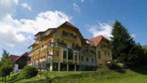 Der Wildwiesenhof in Miesenbach