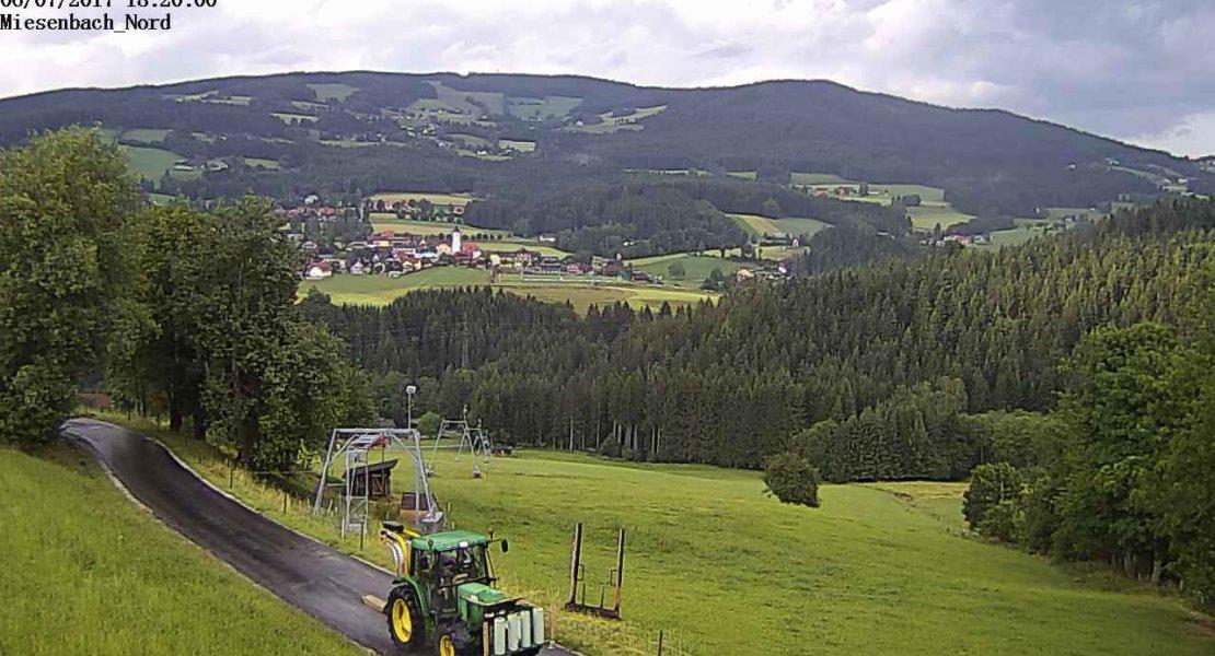Eine Woche Miesenbacher Sommer in 75 Sekunden