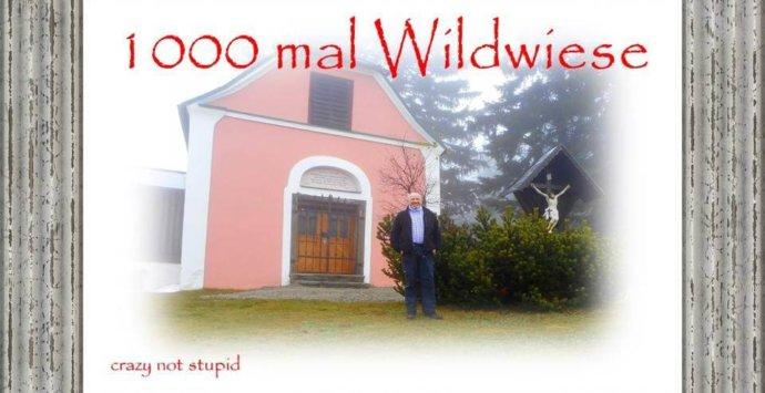 1000 mal auf die Wildwiese
